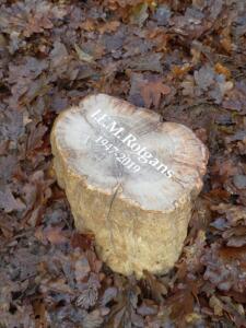 Versteend hout, een link naar historie en nu. Kleine houtstronk geplaatst op Natuurbegraafplaats Den en Rust door AnnaAnna grafmonumenten